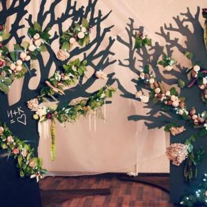 Фотозона Белые деревья