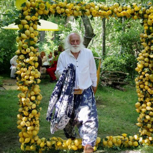 Фотозона из лимонов
