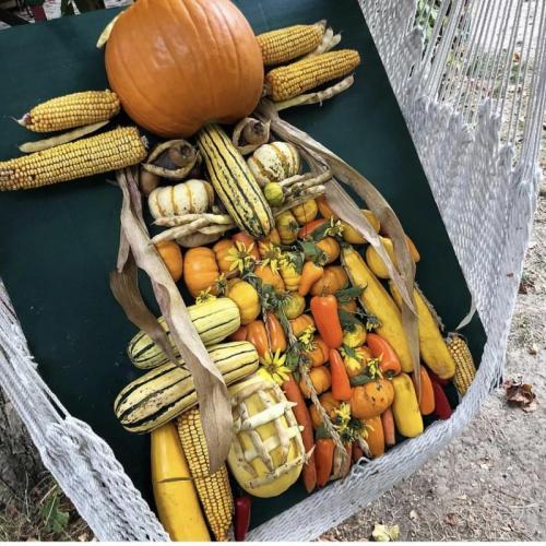 желтый портрет из овощей и фруктов